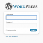 blank_wordpress_login_form