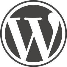 Custom post fields using Advanced Custom Fields Wordpress plugin
