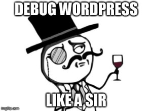 debug wordpress like a sir